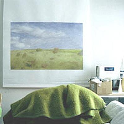 Muu maa, 2004