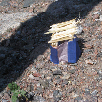 Voikukkapyhättö, ja muita suojatiloja, 2011